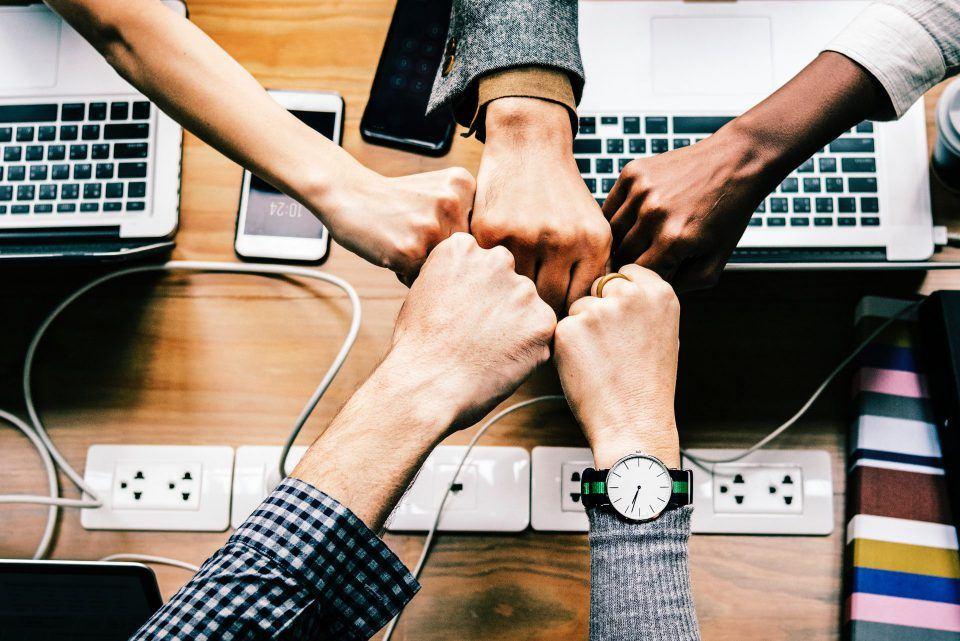 Introductie en draagvlak creëren medewerkers