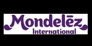 Verkleind logo Modelez